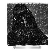 Conspiracy In The Snow Shower Curtain