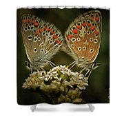 Contact - Detail Of The Butterflies Shower Curtain
