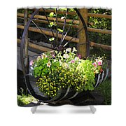 Contained Flowers  Shower Curtain