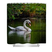 Contemplating Swan Shower Curtain