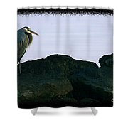 Contemplating Heron Shower Curtain