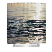 Contemplation 2 Shower Curtain
