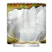 Contemporary White Iris Shower Curtain