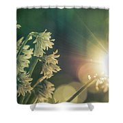 Contra Jour Flowers 1 Shower Curtain