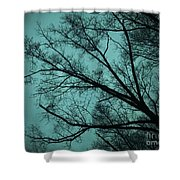 Contrasted Trees Shower Curtain