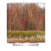 Contrasting Colors Shower Curtain