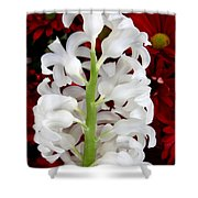 Contrasting Red And White Flowers Shower Curtain