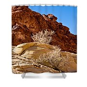 Contrasting Rocks Shower Curtain