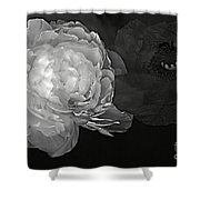 Contrasts In Floral Kingdom In Black And White. Shower Curtain