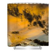 Contrasts Shower Curtain