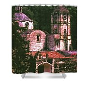 Convent Cezzanne Style Shower Curtain