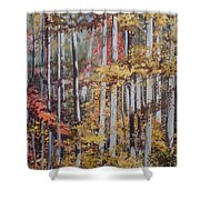 Converging Colors Shower Curtain