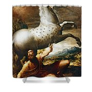 Conversion Of St. Paul Shower Curtain