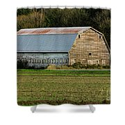 Conway-249-edit- Shower Curtain