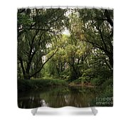 Cook County Forest Preserve No 6 Shower Curtain