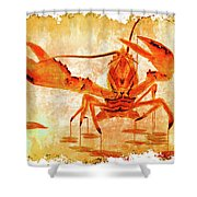 Cooked Lobster On Parchment Paper Shower Curtain
