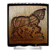 Cookie Mold 20 Shower Curtain