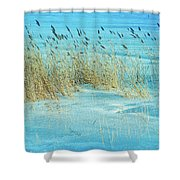 Cool Blue Blowing In The Wind Shower Curtain