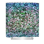 Cool Blue Pink Petals On Stones Shower Curtain