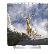 Cool Deer Shower Curtain
