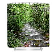 Cool Green Stream Shower Curtain