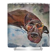 Cool Lab With Sunglasses Shower Curtain