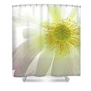 Cool Lotus Shower Curtain