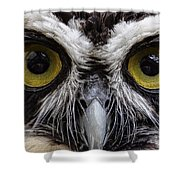 Cool Peepers Shower Curtain
