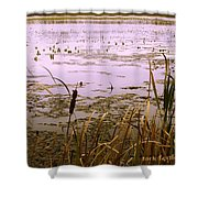 Cool Sunset At White City Shower Curtain
