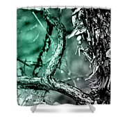 Cool Tone Madrone  Shower Curtain