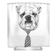Cooldog Shower Curtain by Balazs Solti