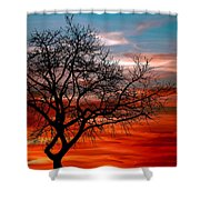 Cooling Down Shower Curtain