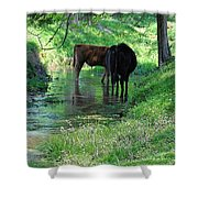 Cooling Spring Shower Curtain