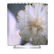 Coolly Abstract Shower Curtain