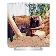 Cooling Off Shower Curtain