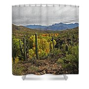 Coon Creek Looking South Shower Curtain