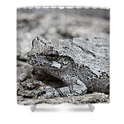 Cope's Gray Tree Frog #5 Shower Curtain