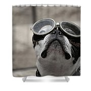Copilot Shower Curtain