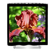Copper Iris Triptych Squared Shower Curtain