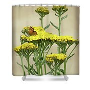 Copper On Yellow - Butterfly - Vignette 2 Shower Curtain
