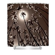 Coppertone Palms Shower Curtain