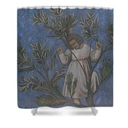 Copy Of Giotto's Frescoes Shower Curtain