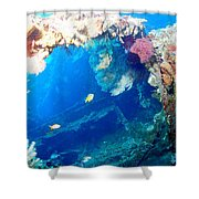 Coral Archways Shower Curtain