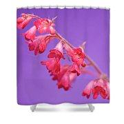 Coral Bells Shower Curtain