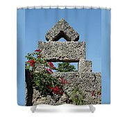 Coral Castle For Love Shower Curtain