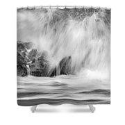 Coral Cove Park 0598 Shower Curtain