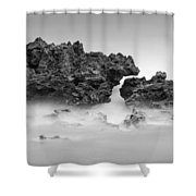 Coral Cove Park 0606 Shower Curtain