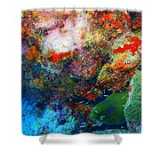 Coral Eel Shower Curtain