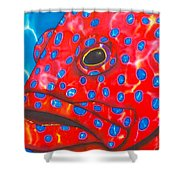 Coral Groupper II Shower Curtain by Daniel Jean-Baptiste