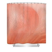 Coral Moods Shower Curtain
